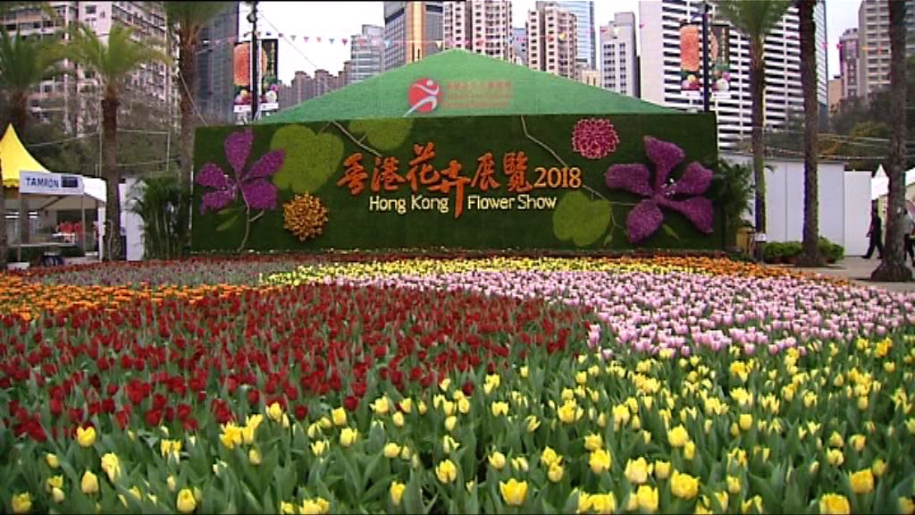 一連十日花卉展 周五維園揭幕