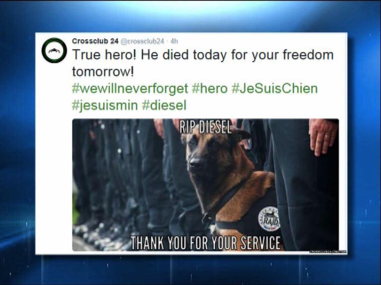 網民悼念為反恐殉職法國警犬