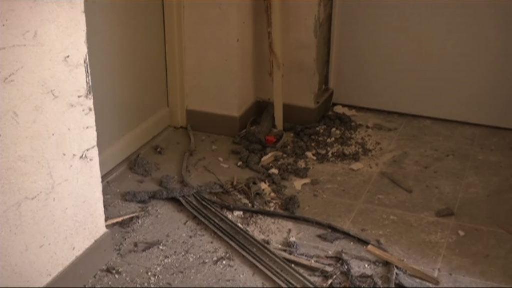 法拘三男一女 檢獲高爆炸性炸藥