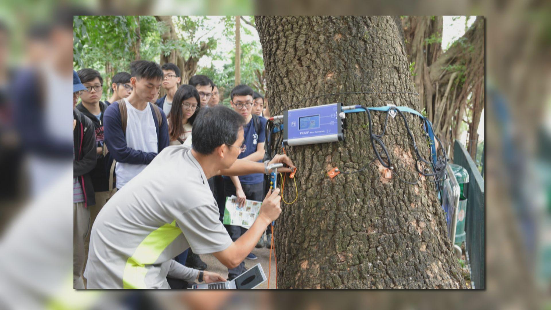 陳茂波:設基金培訓樹藝及園藝業人員