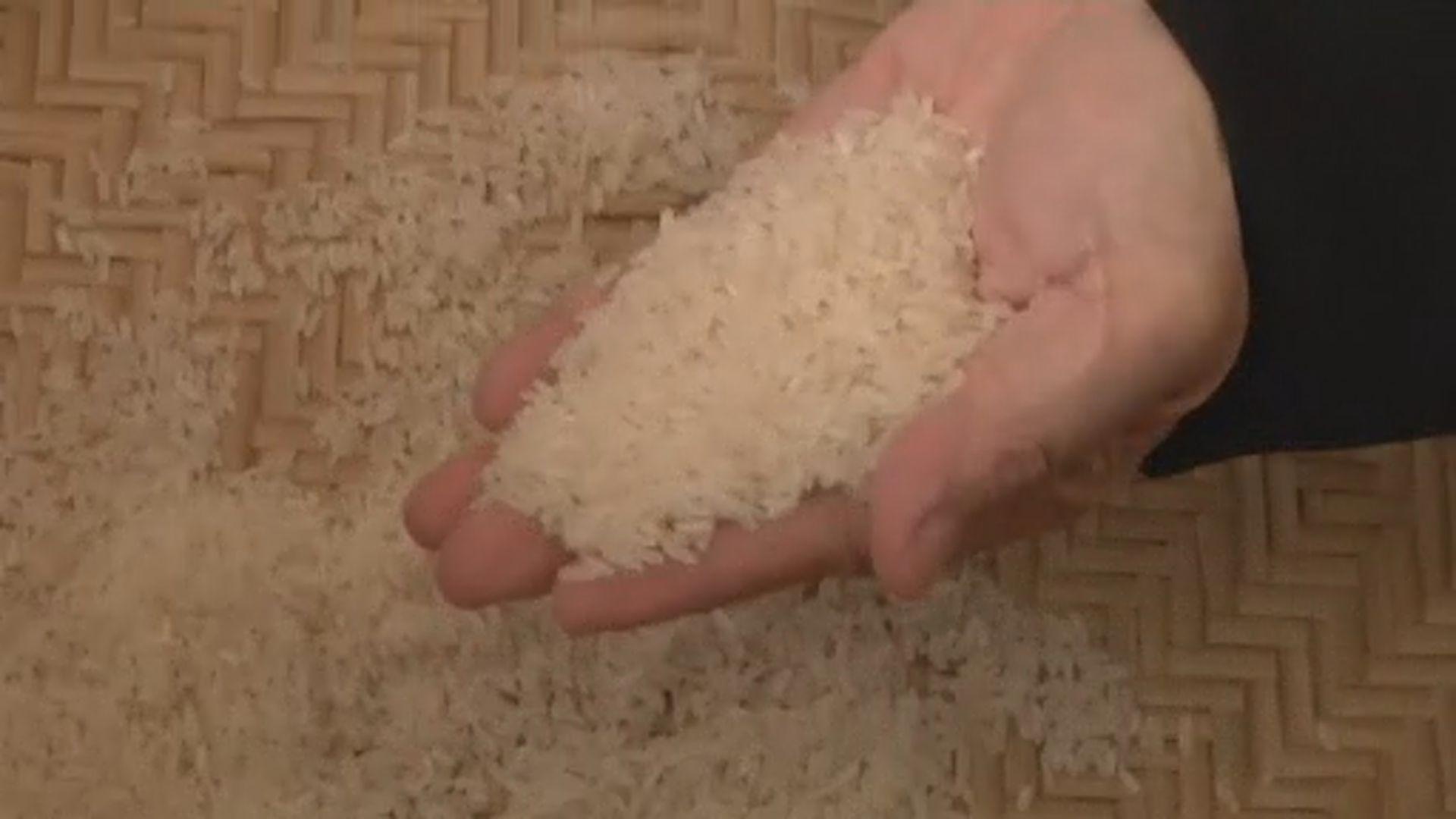 【環球薈報】研究指出多吃米飯有助對抗肥胖