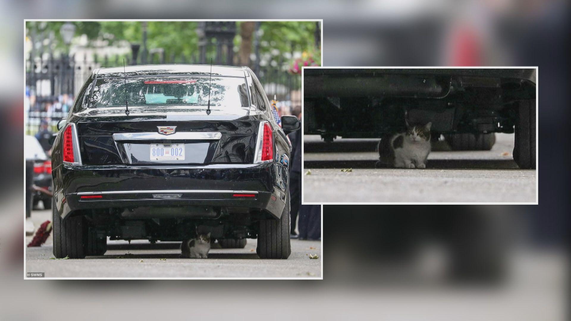 【環球薈報】捕鼠大臣為避雨阻特朗普行程