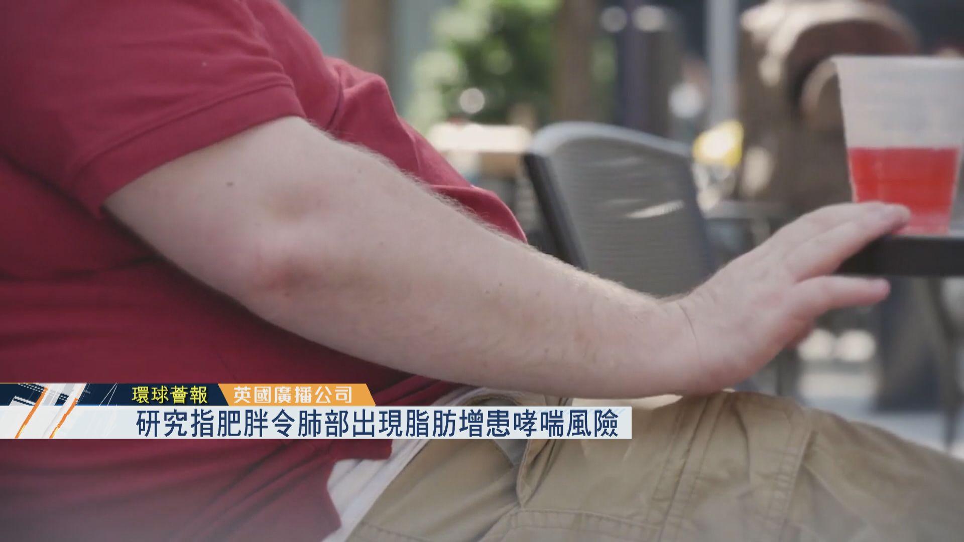 【環球薈報】研究指肥胖令肺部出現脂肪增患哮喘風險