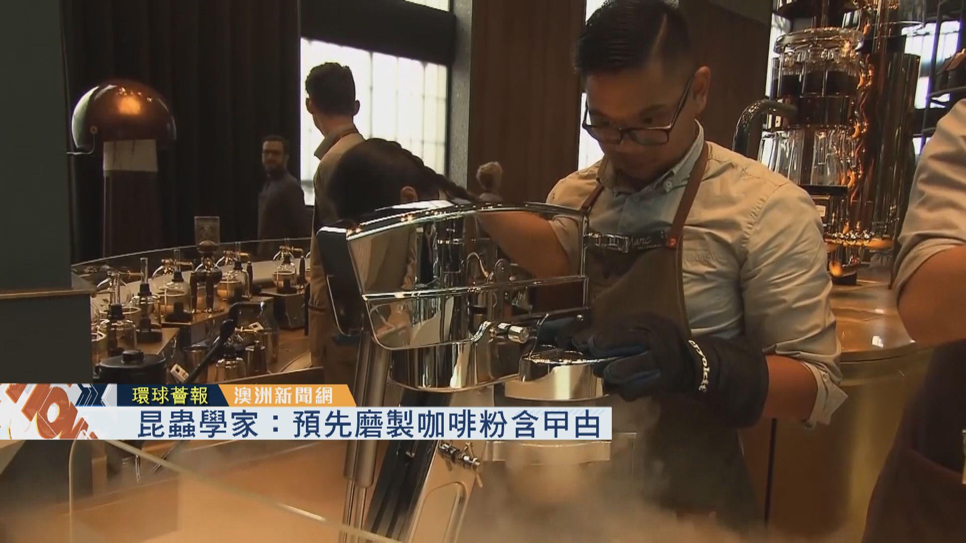 【環球薈報】昆蟲學家:預先磨製咖啡粉含曱甴