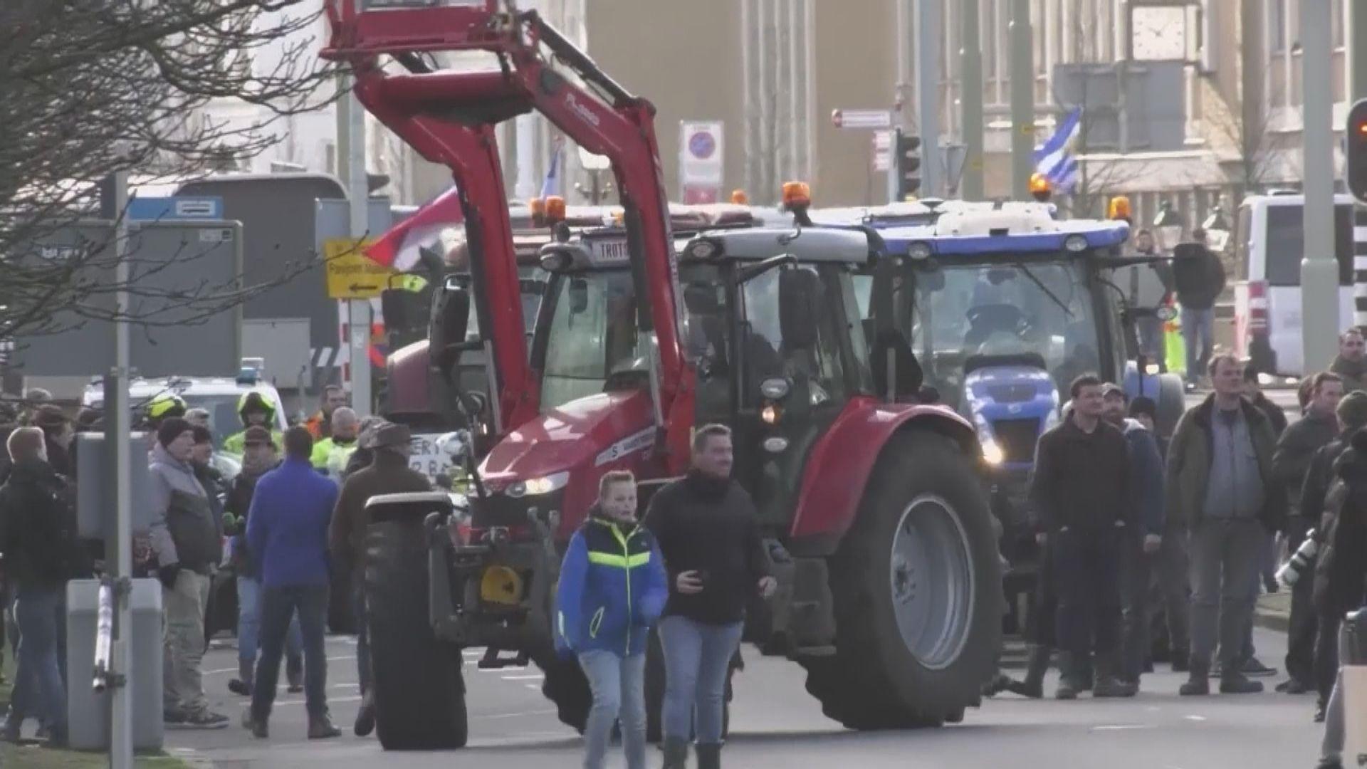 【環球薈報】荷蘭農夫抗議政府要求畜牧業減排