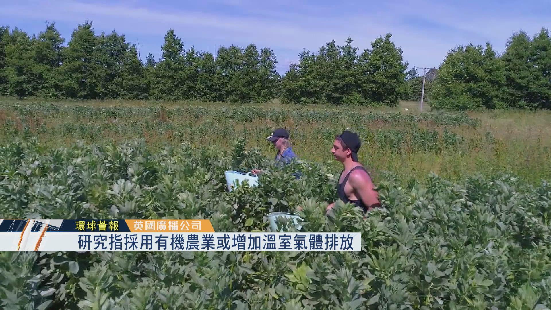 【環球薈報】研究指採用有機農業或增加溫室氣體排放