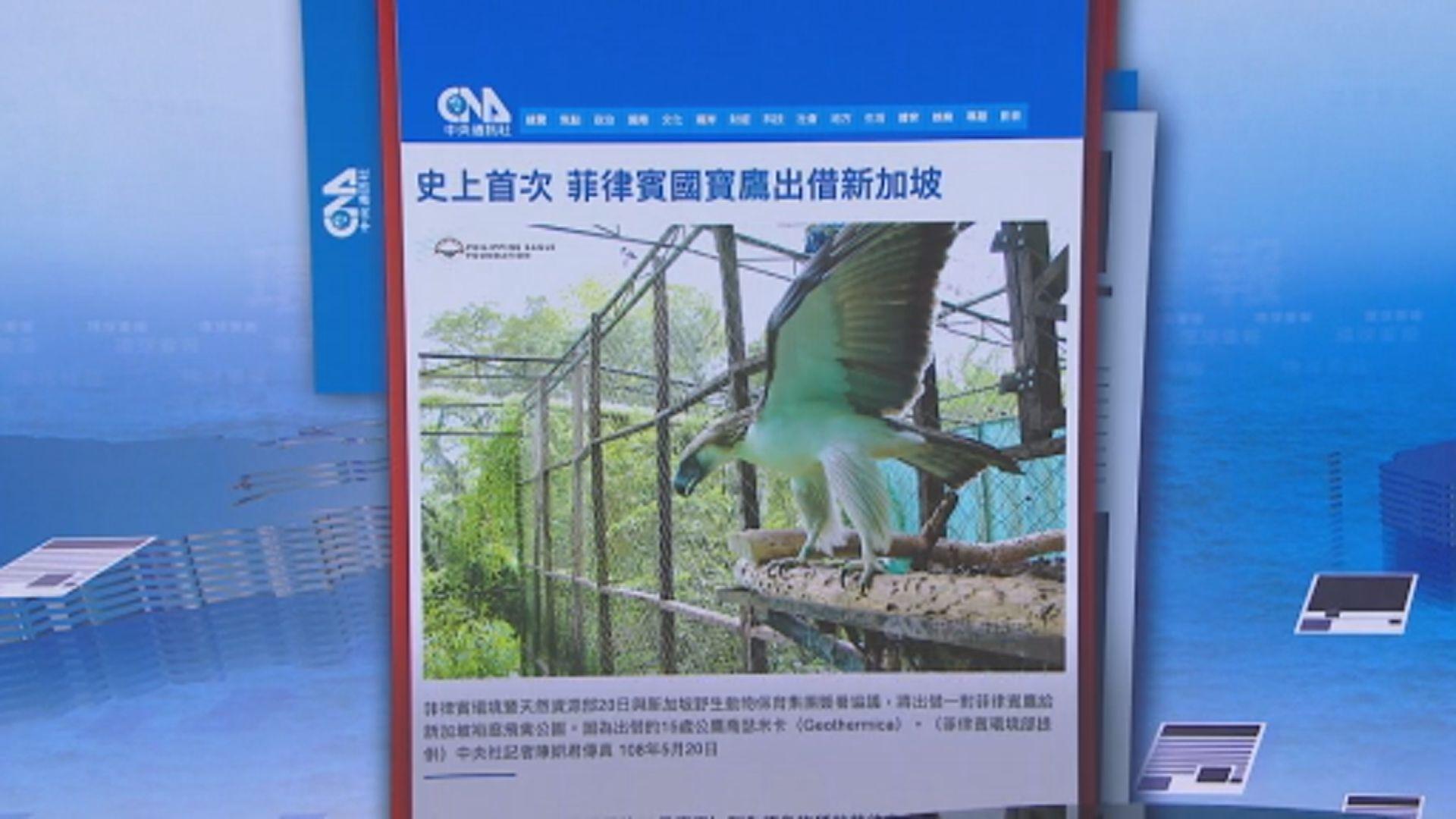 【環球薈報】菲律賓首次對外借出極度瀕危國鳥