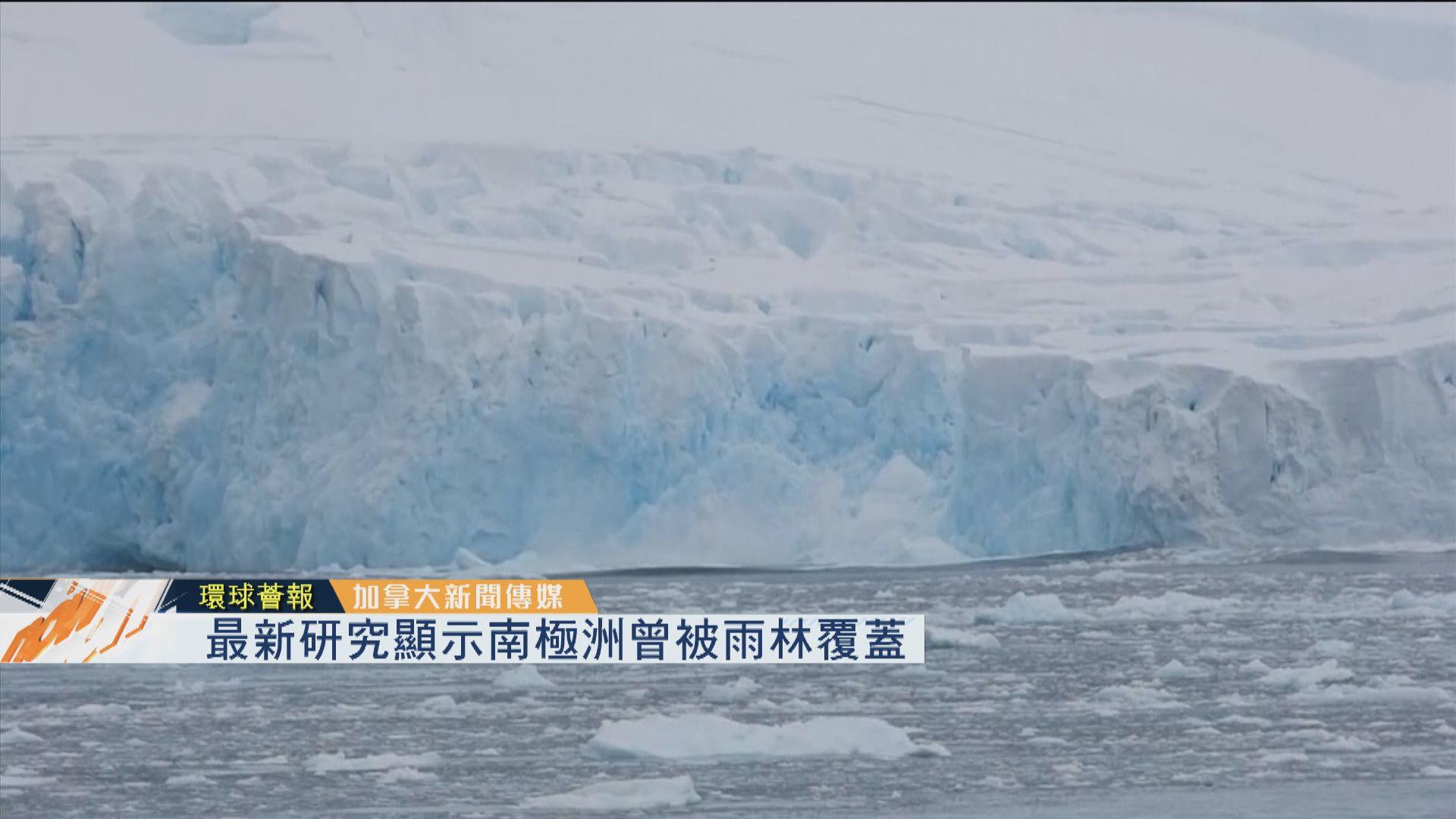 【環球薈報】最新研究顯示南極洲曾被雨林覆蓋
