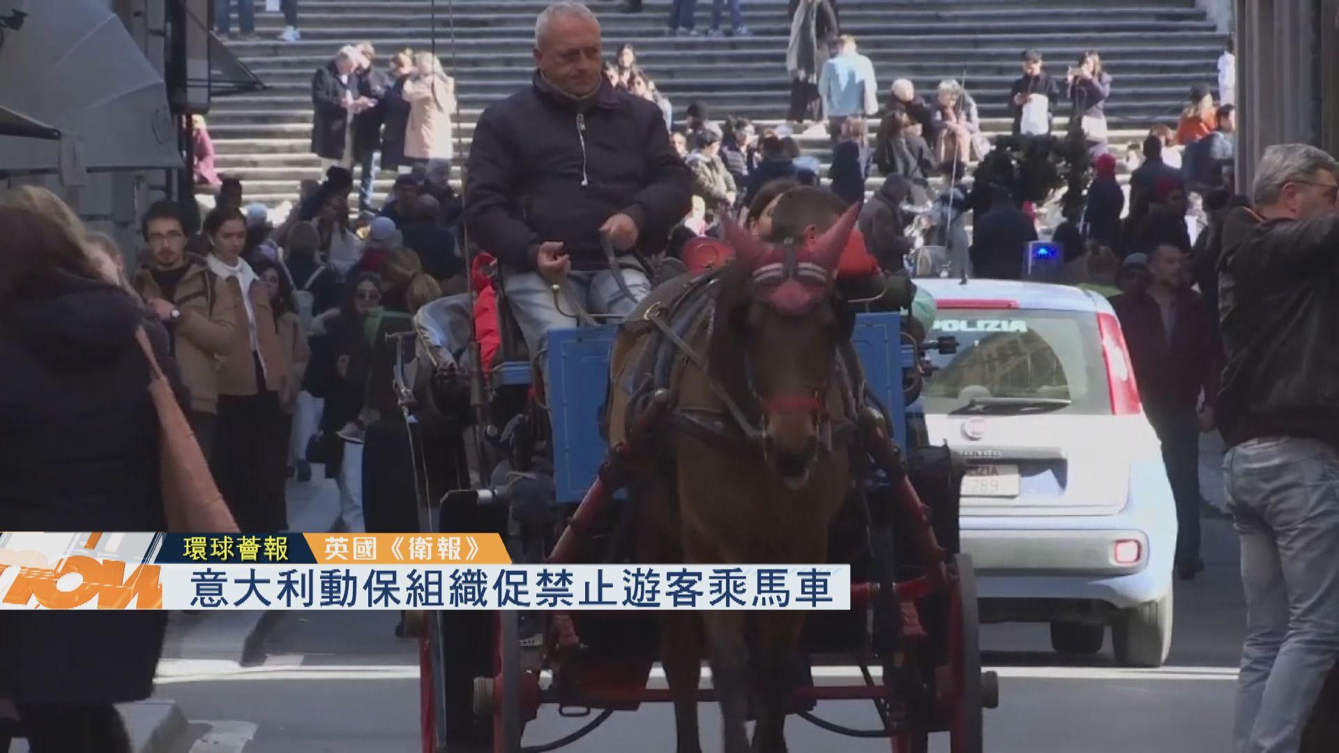 【環球薈報】意大利動保組織促禁遊客乘馬車