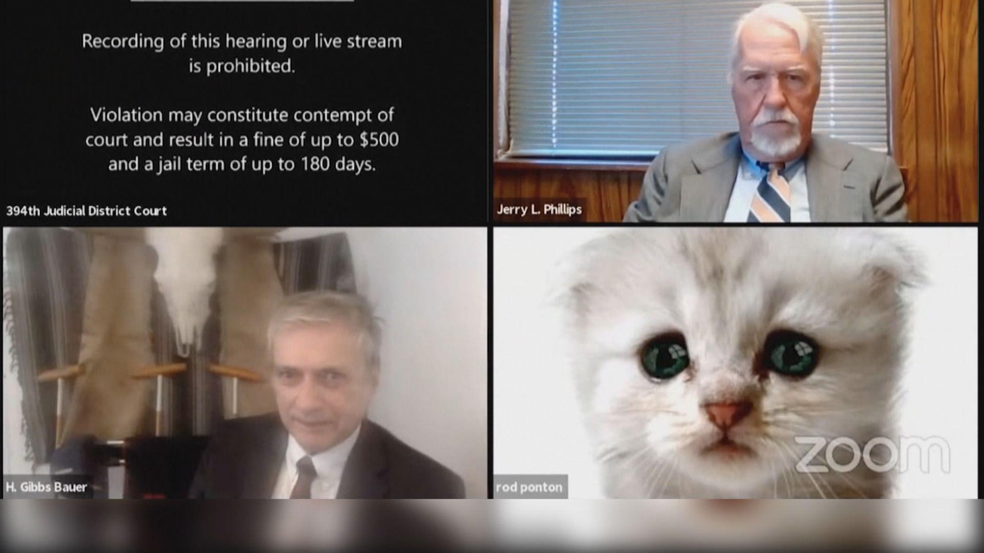 【環球薈報】Zoom未取消濾鏡 檢察官變成一頭貓