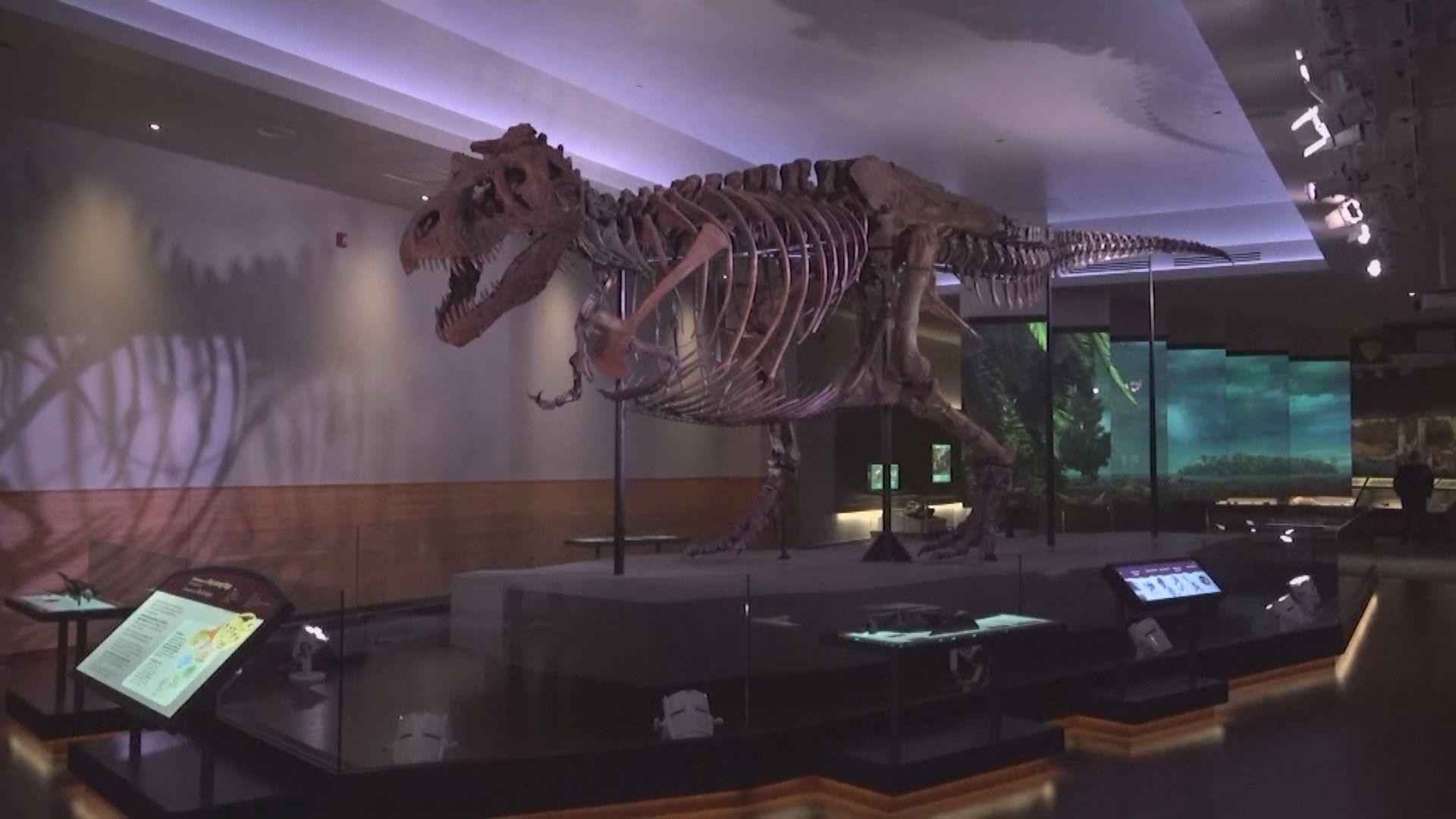 【環球薈報】古生物學家估算約25億隻暴龍曾存在於世