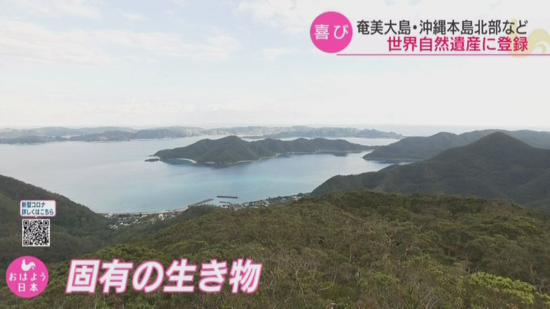 【環球薈報】日本奄美大島、德之島、沖繩島北部及西表島列世界自然遺產