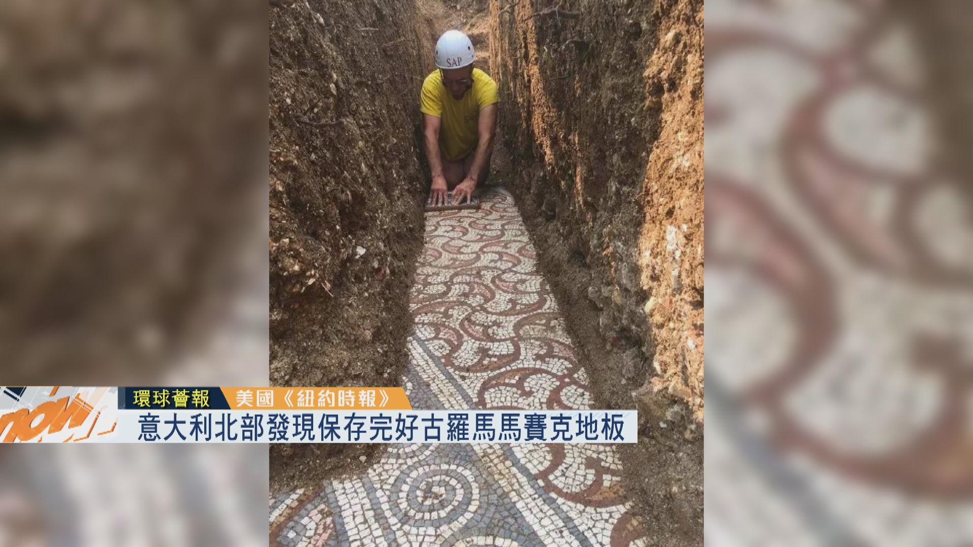 【環球薈報】意大利北部發現保存完好古羅馬馬賽克地板