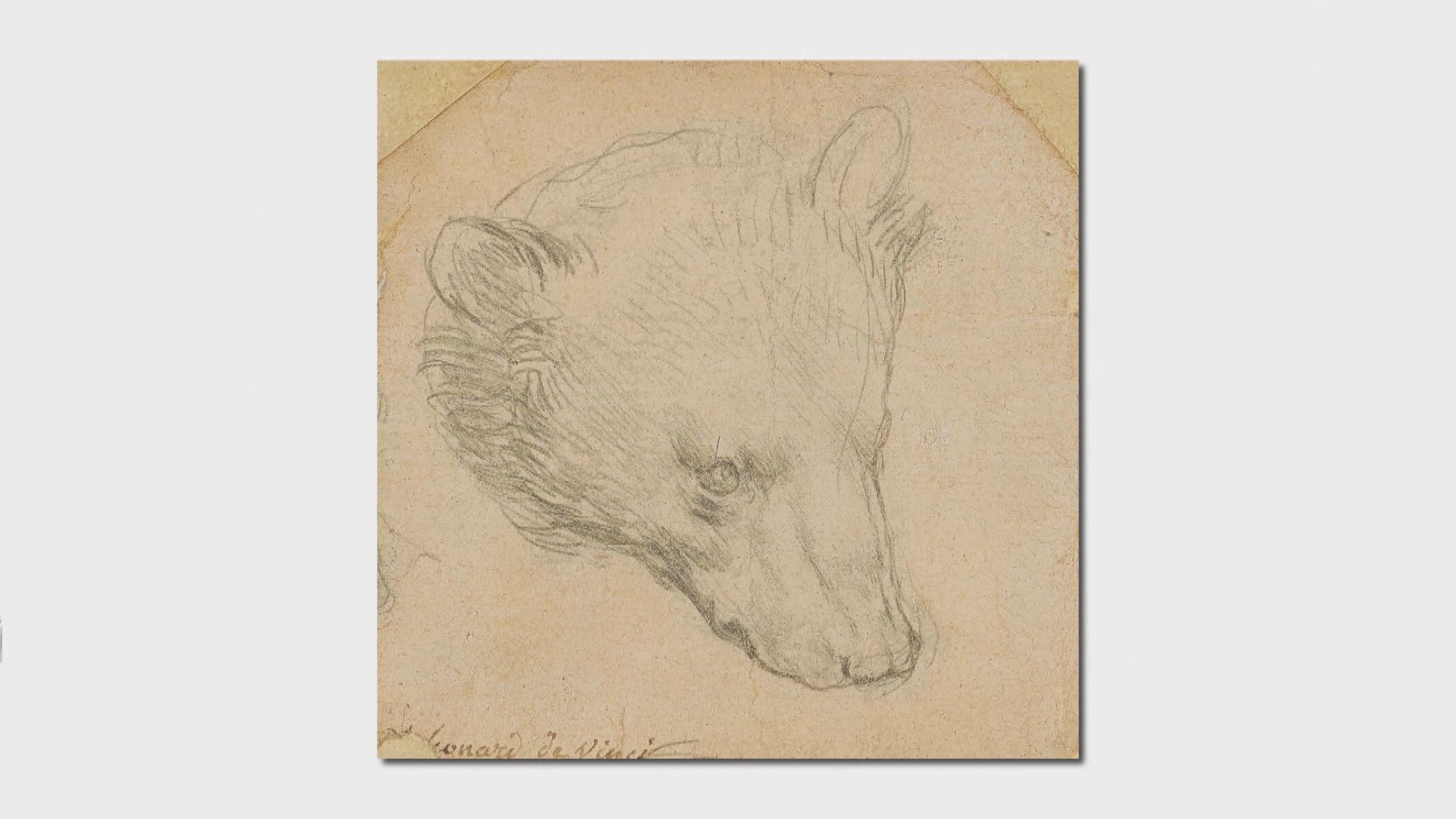 【環球薈報】達文西小型畫作《熊頭》逾1200萬美元成交