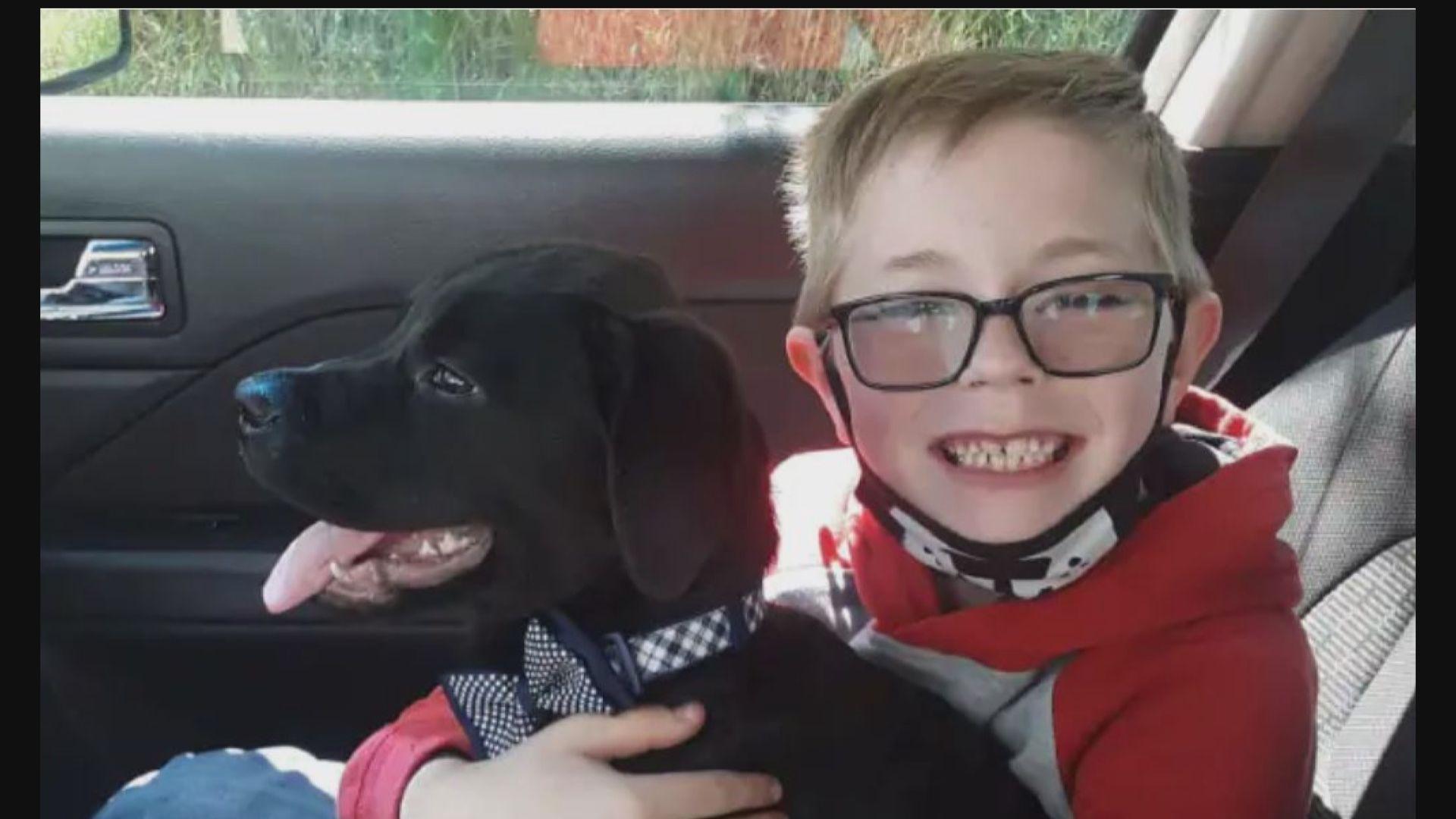 【環球薈報】為治療家中小狗 男童割愛出售珍藏