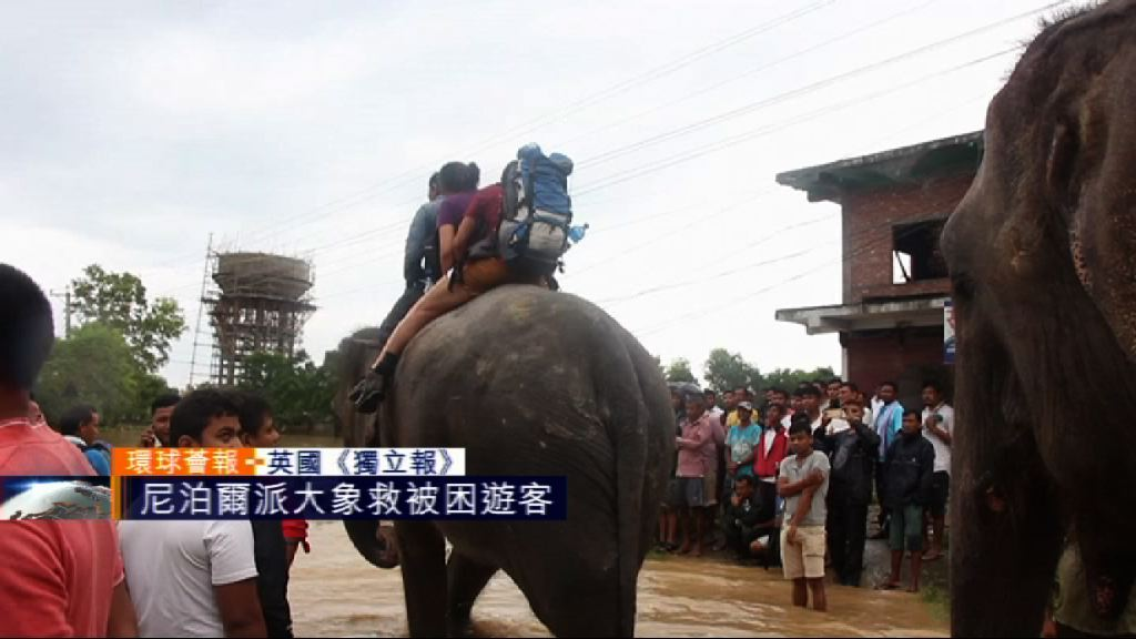 【環球薈報】尼泊爾派大象救出被困遊客