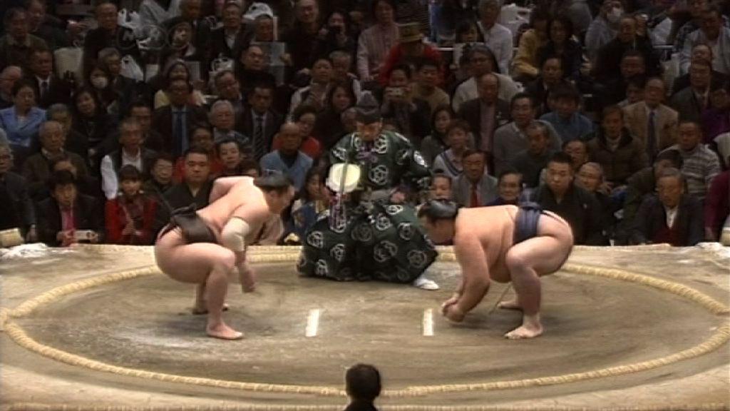 【環球薈報】日本相撲運動面臨失傳危機