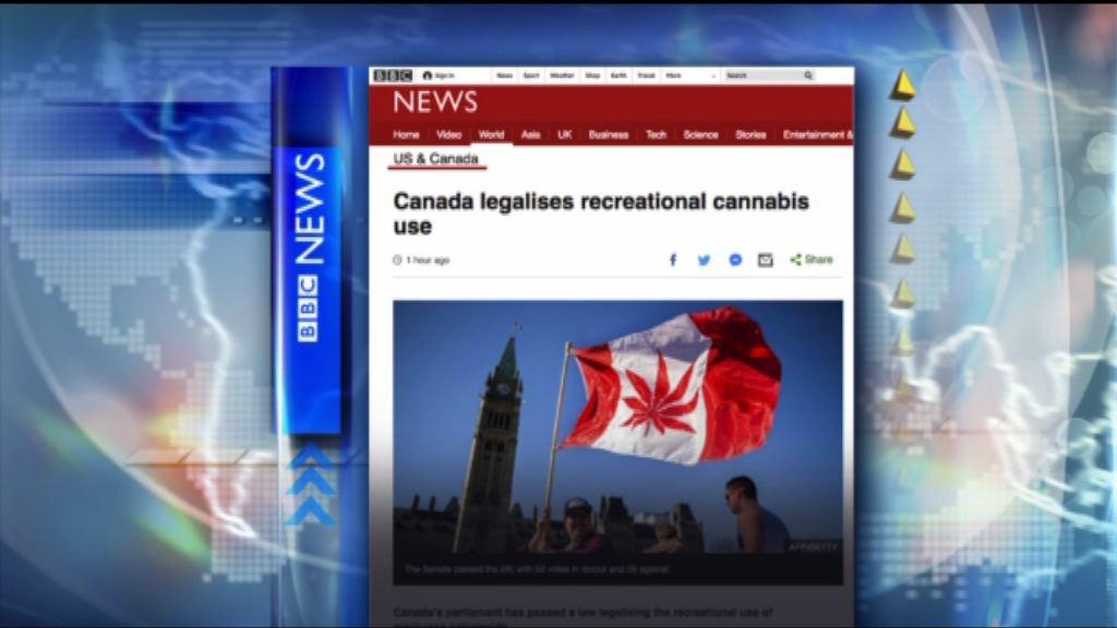 【環球薈報】加拿大通過大麻合法化