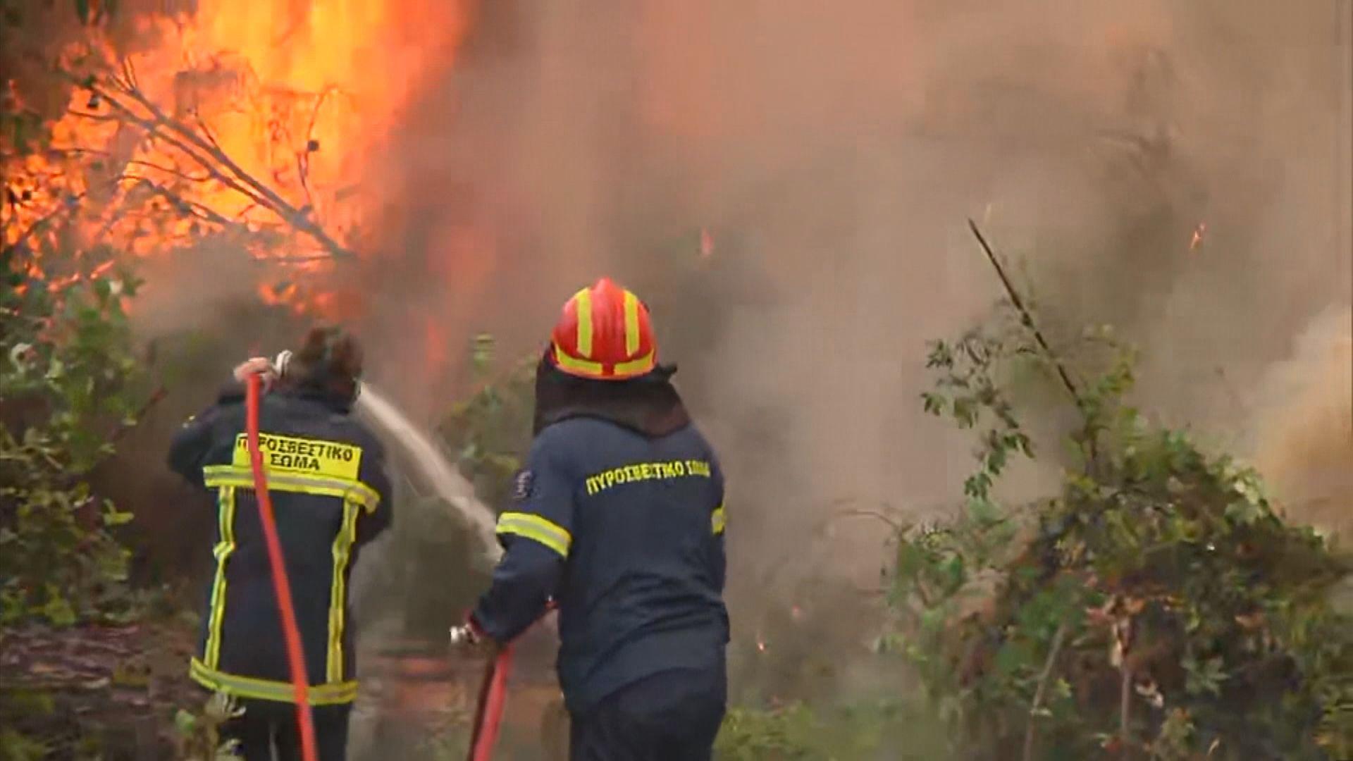 希臘總理就撲救山火不力致歉