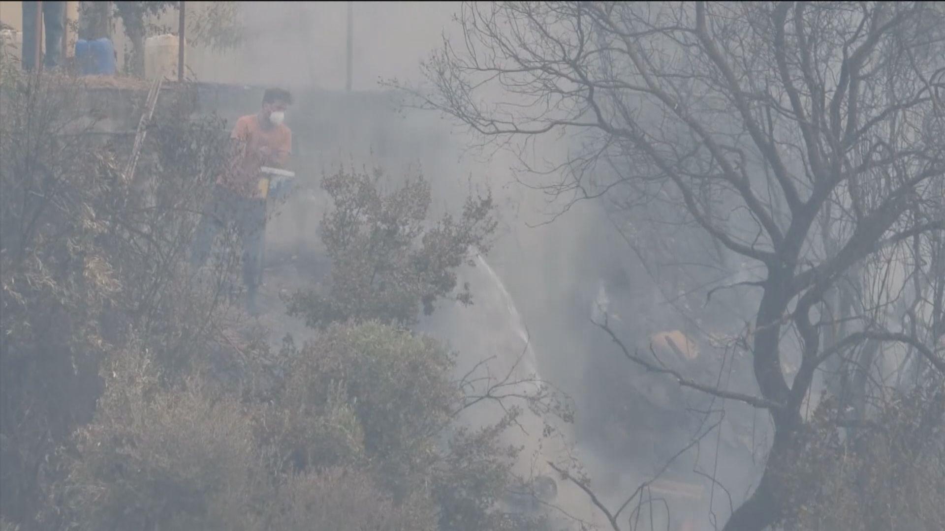 希臘埃維亞島山火火勢持續 多國派員支援