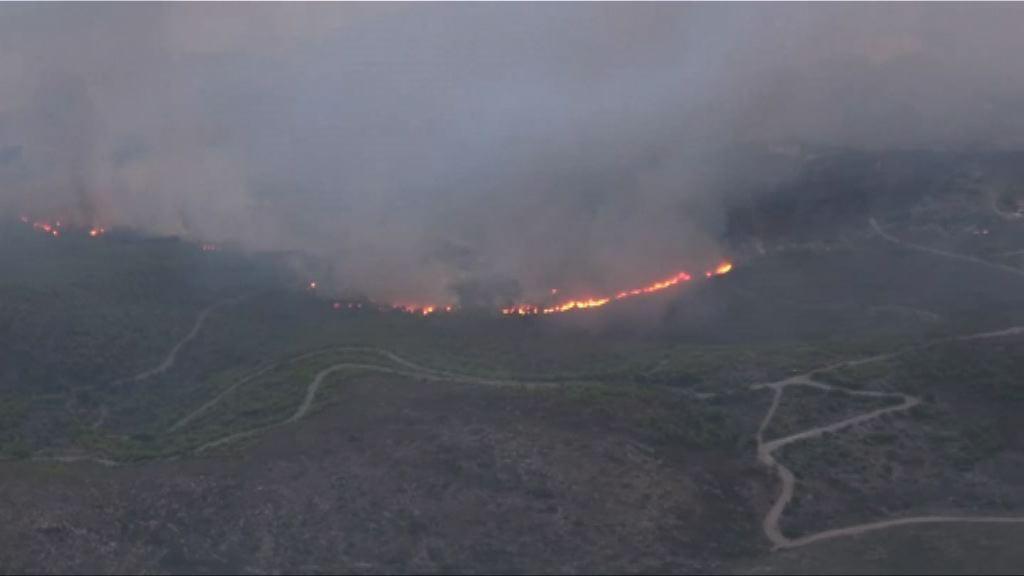希臘山火釀最少74死 全國哀悼三日