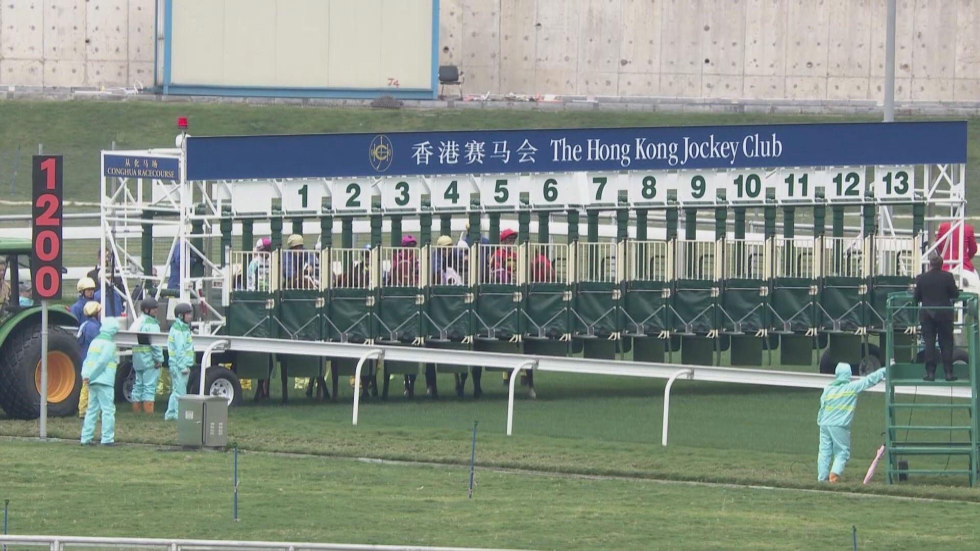 從化馬場舉行五場示範賽 吸引千七人觀賽