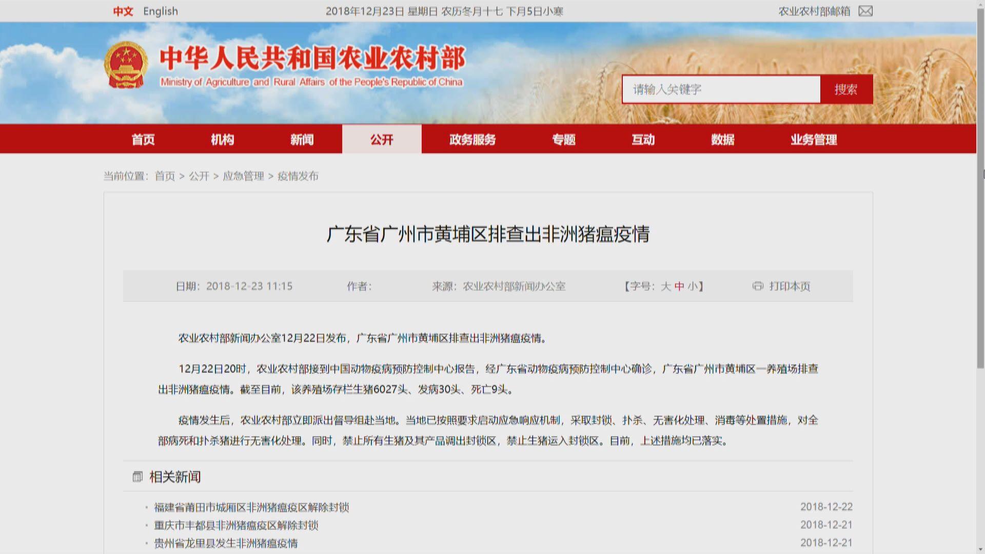 廣州市黃埔區確診非洲豬瘟疫情