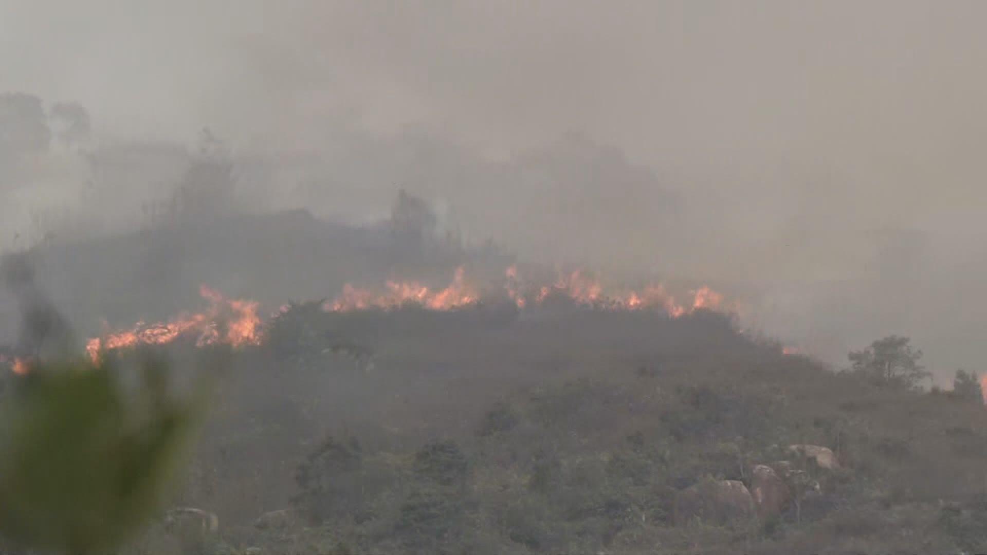 黃色火災危險警告下新界多處發生山火