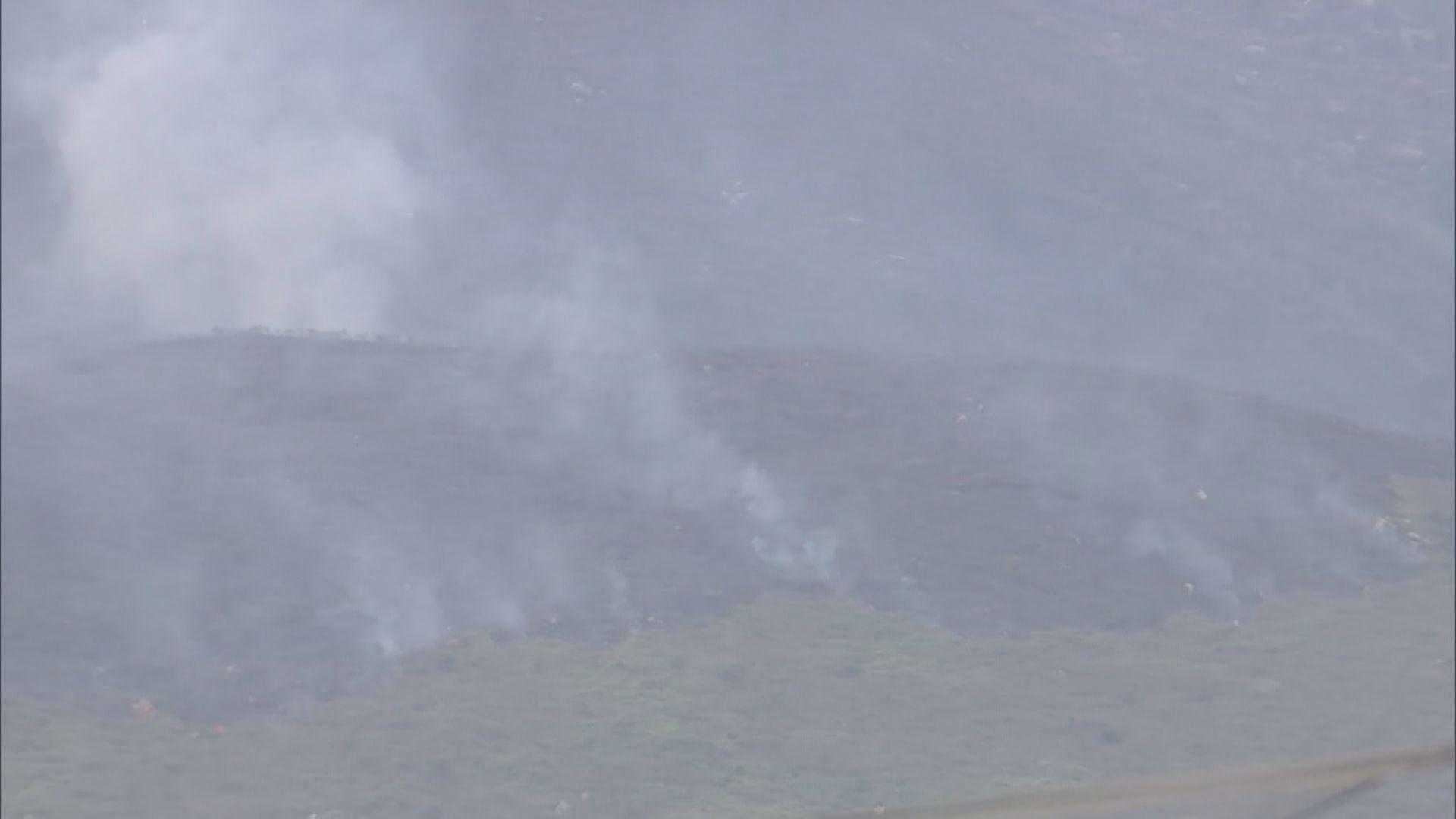 黃色火災危險警告 消防處接獲至少40宗山火報告