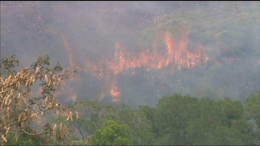 黃色火災危險警告生效 新界多處有山火
