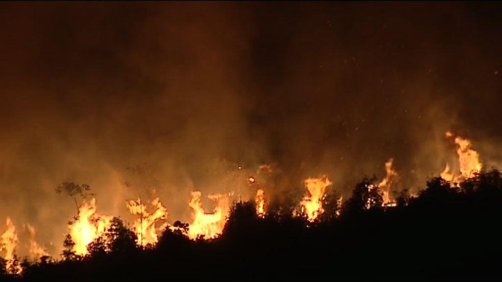 小瀝源山火焚燒十多小時未熄