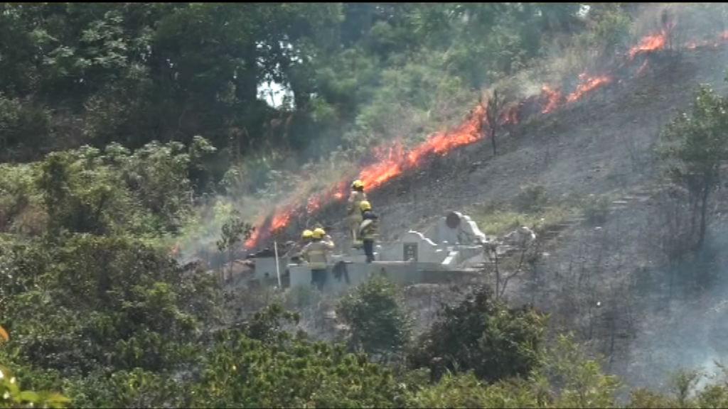 清明節 消防處接獲最少97宗山火