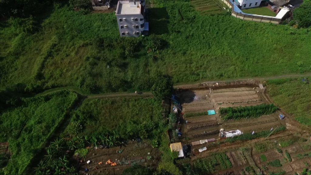 【地產股急升】美銀美林:首置盤或加快農地轉換