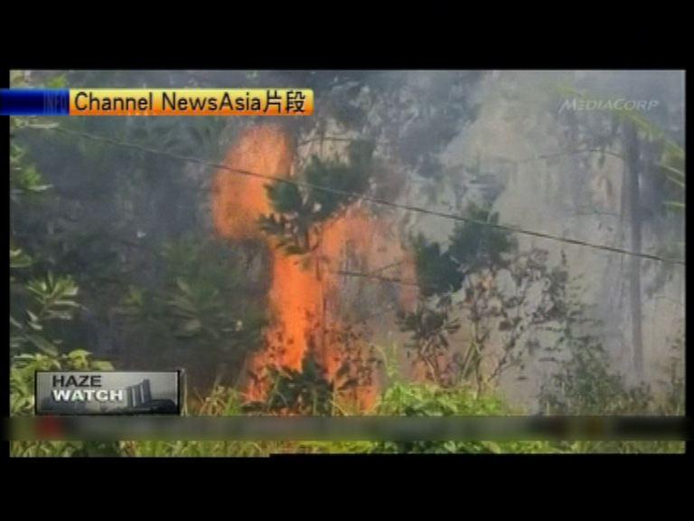 印尼山火影響新加坡及馬來西亞