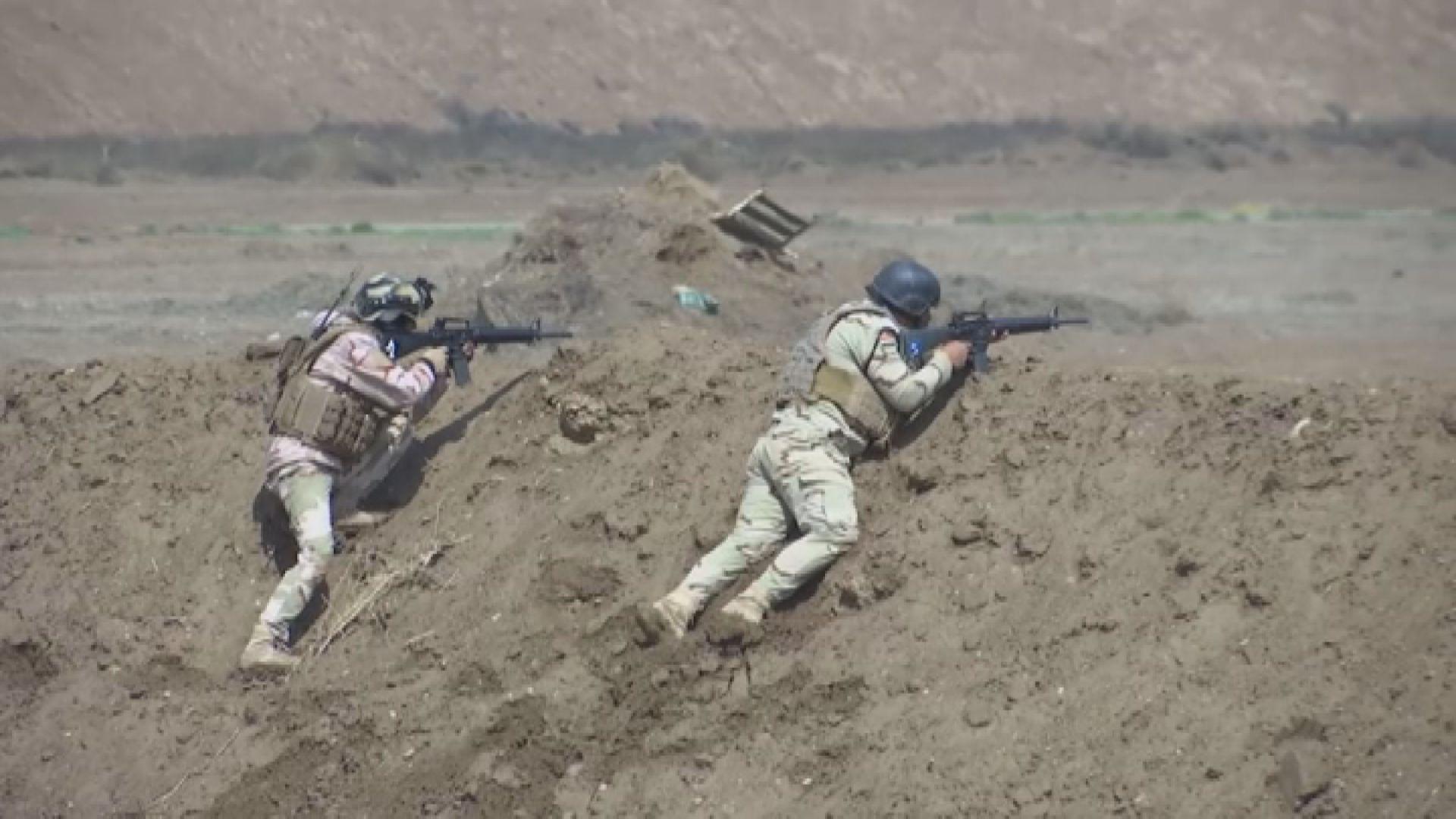 德國荷蘭暫停伊拉克軍事訓練項目