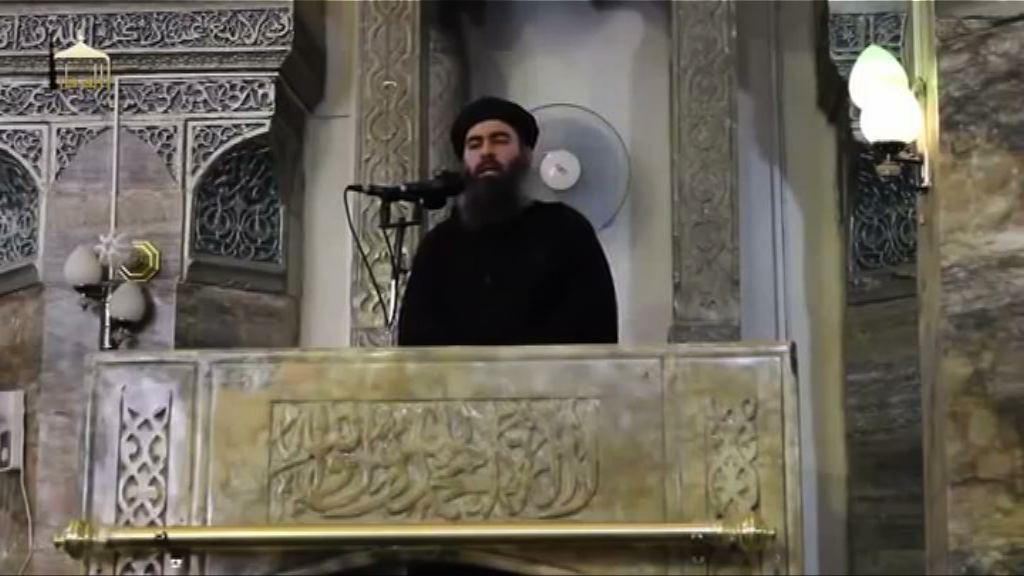 伊斯蘭國領袖:聯軍空襲不挫組織銳氣