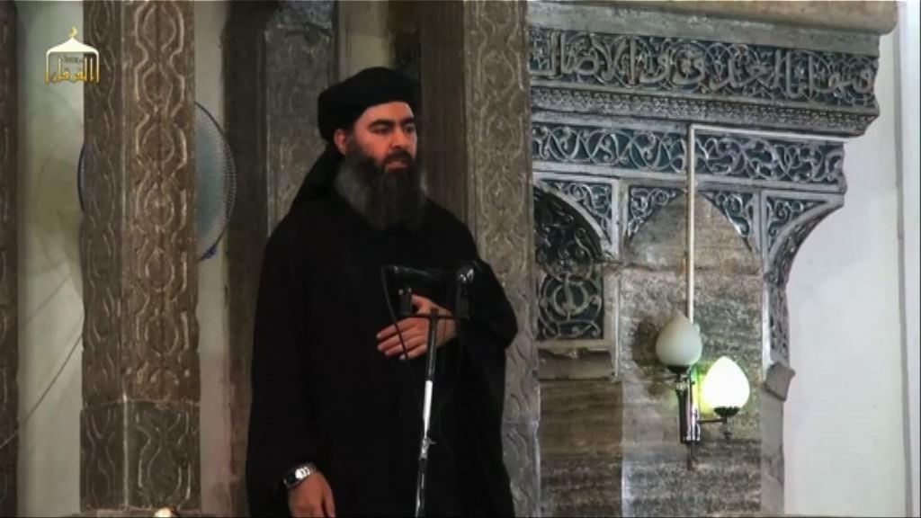 伊斯蘭國證實領袖巴格達迪死訊