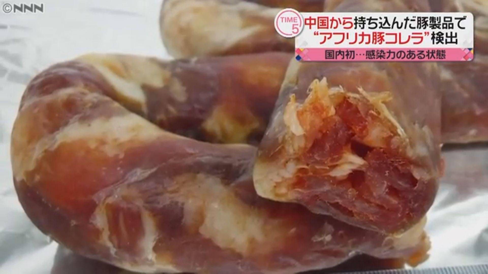 日本指中國旅客帶入境豬肉腸含非洲豬瘟病毒
