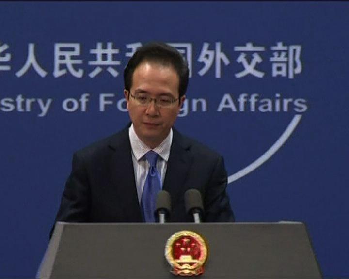 外交部:中日同處理非法撈珊瑚