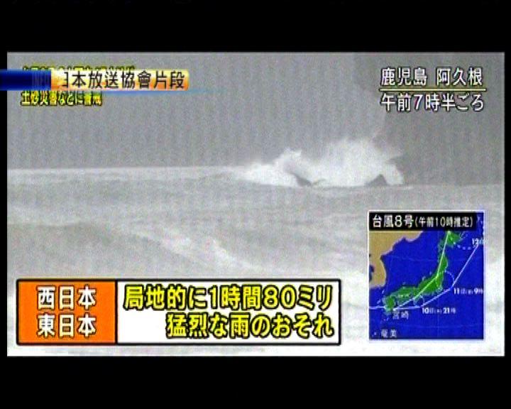 浣熊在日本鹿兒島登陸