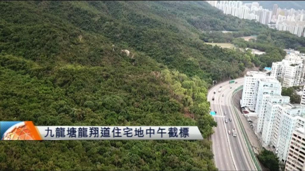 九龍塘龍翔道住宅地中午截標