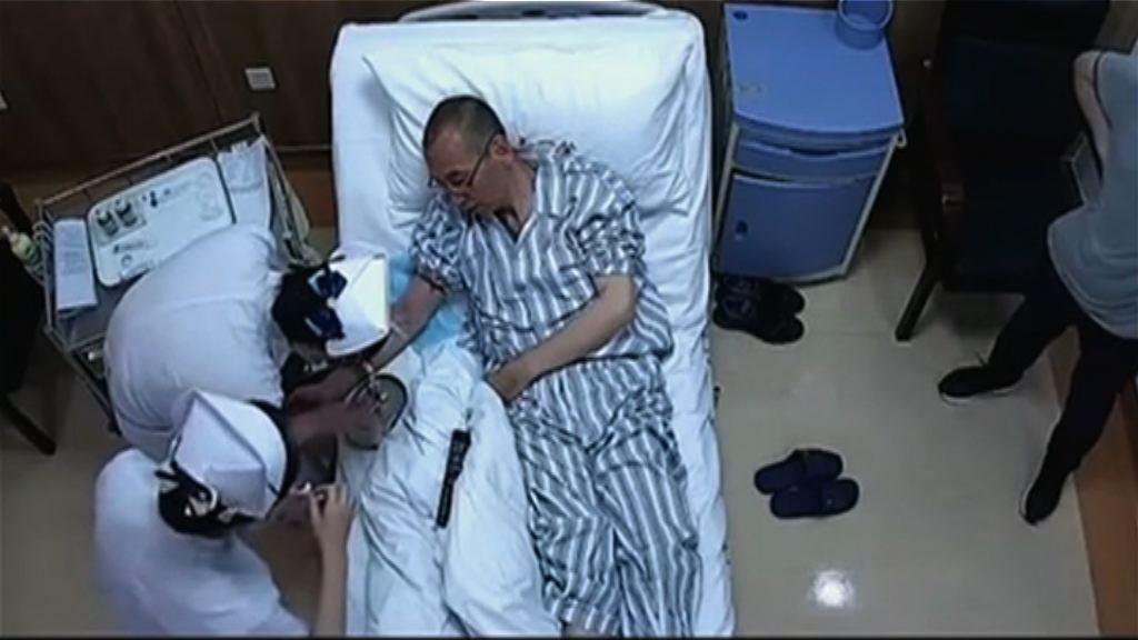 醫院證實劉曉波停用中西抗癌藥