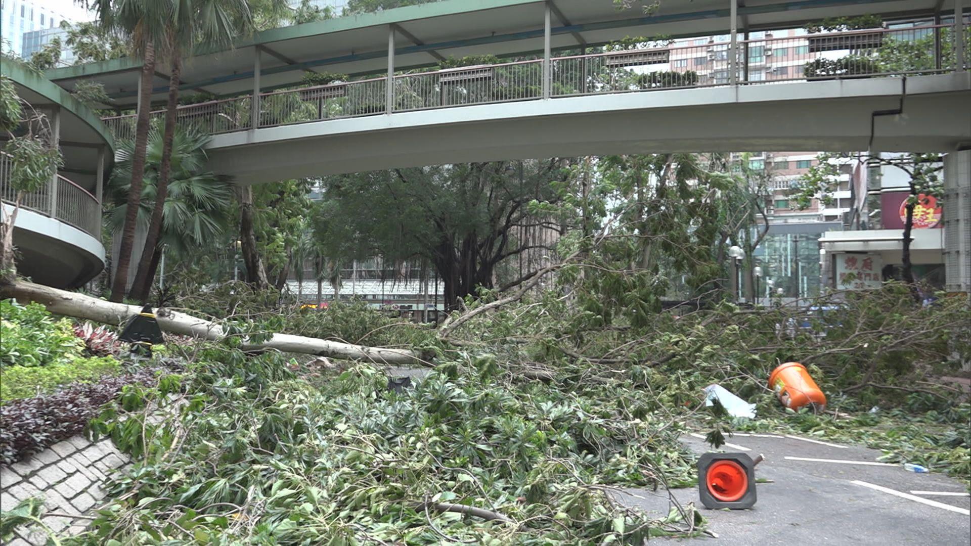 山竹襲港 600多段路有障礙物待清理