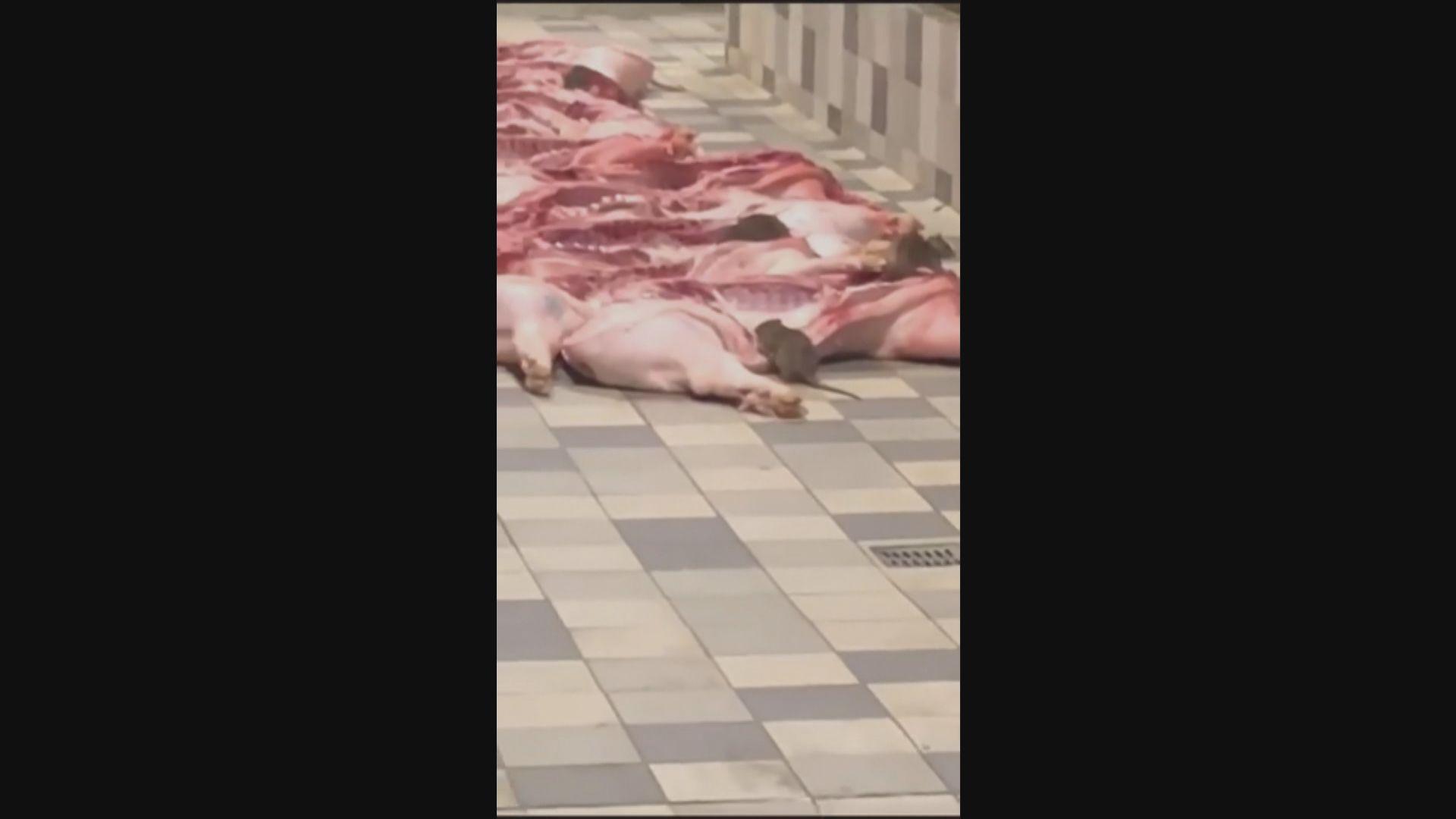 秀茂坪街市老鼠食豬肉 領展勒令檔戶停業