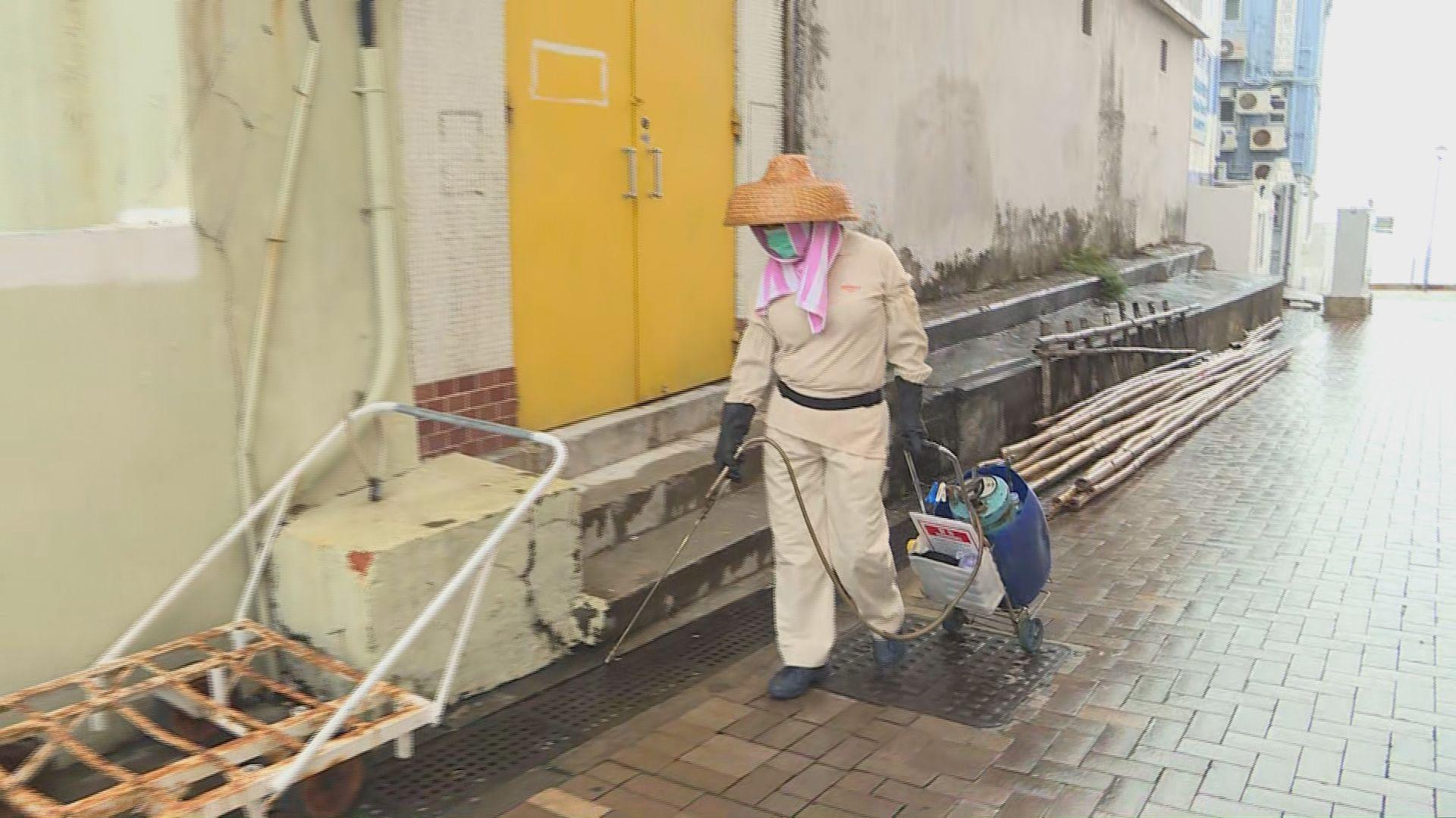 食環署派員到長洲全島滅蚊