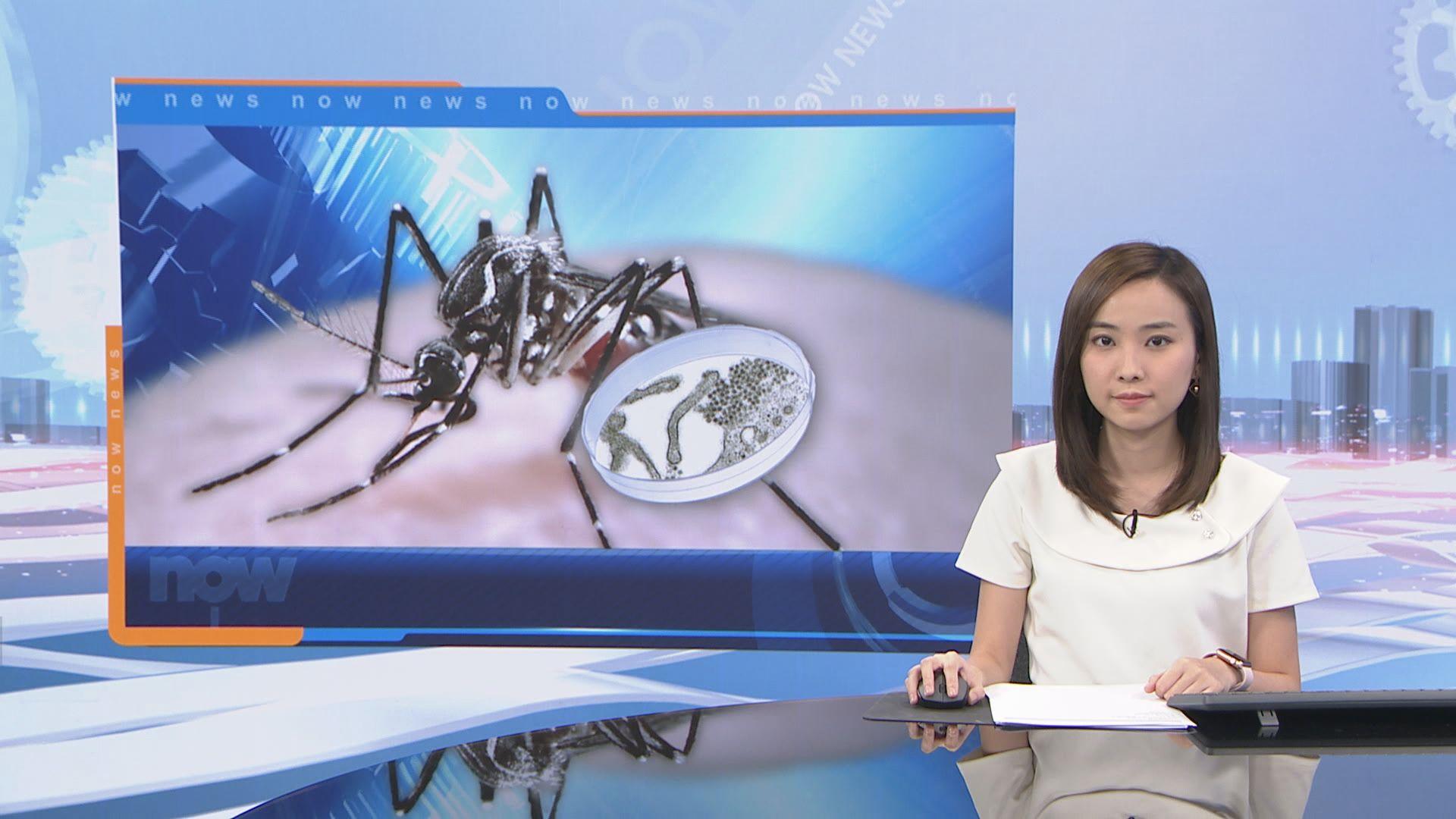 上月白紋伊蚊誘蚊產卵器指數達15.7%