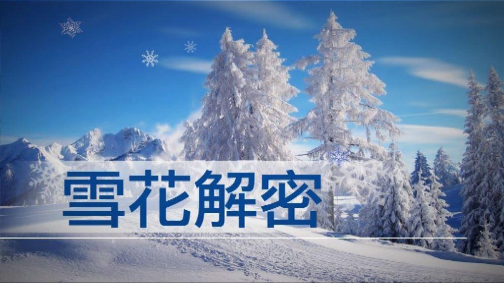 【新聞智庫】雪花解密