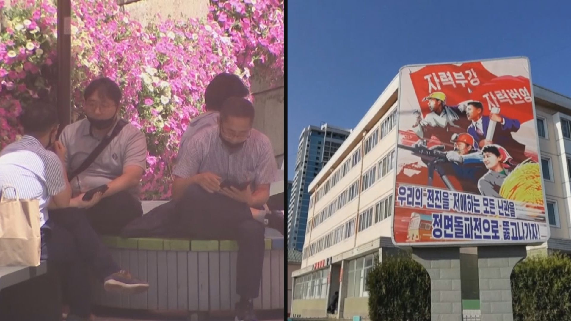 金與正批南韓總統文在寅是「美國養的鸚鵡」