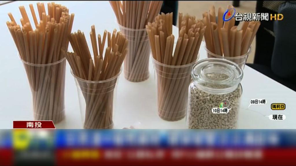 台灣年輕人研發以甘蔗渣製作纖維飲管