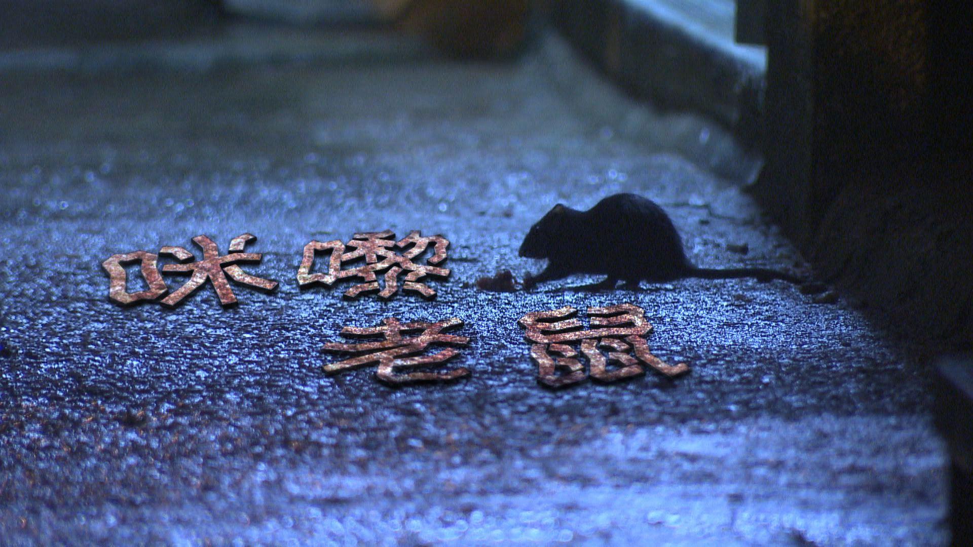 【經緯線】咪嚟老鼠(一)